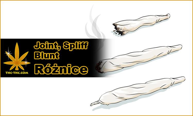 joint, spliff, blunt, różnice, między, nimi