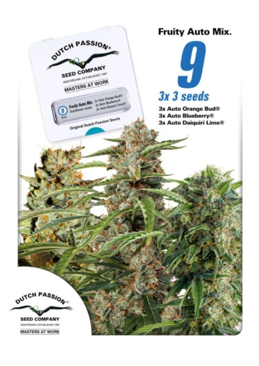 Fruity Autoflower Mix Feminizowane 9szt - Dutch Passion, Nasiona Marihuany, Konopi, Cannabis