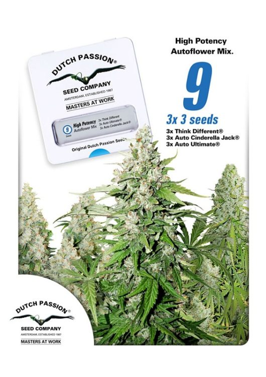 High Potency Autoflower Mix Feminizowane 9szt - Dutch Passion, Nasiona Marihuany, Konopi, Cannabis
