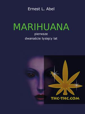 Marihuana Pierwsze Dwanaście Tysięcy Lat
