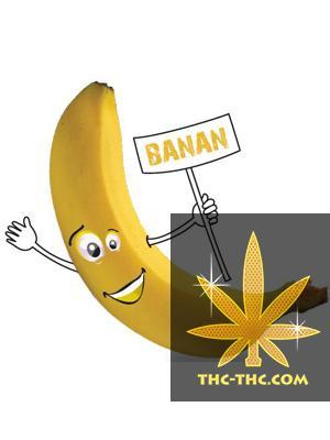 Tytoń do Fajki Wodnej 5pipes Banan, Produkt, Sklep