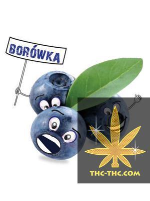 Tytoń do Fajki Wodnej 5pipes Borówka, Produkt, Sklep
