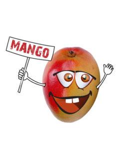 Tytoń do Fajki Wodnej 5pipes Mango, Produkt, Sklep