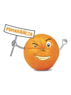 Tytoń do Fajki Wodnej 5pipes Pomarańcza, Produkt, Sklep