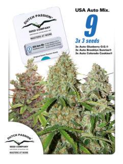 USA Autoflower Mix Feminizowane 9szt - Dutch Passion, Nasiona Marihuany, Konopi, Cannabis